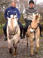 zwei Pferde mit Reitern von vorne