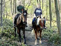 zwei Pferde mit Reitern im Wald